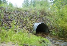 culvert waterway creek roadside
